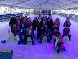 2018-12-13 Patinoire (P1-2-3)